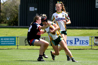 Orange Final - Erina Eagles v Wyong Roos