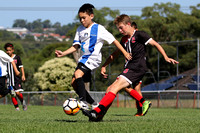 Cup Final - Illawarra Academy v Macquarie White