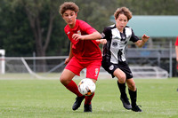 U13 GF - Mid Coast FC v Broadmeadow Magic