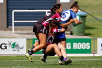 New Zealand Wasps v South East Magic