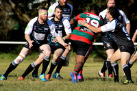 Tea Gardens Hawks v Mallabulla Panthers