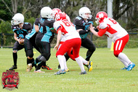 Gridiron Women's - Newcastle Cobras v UTS Nov15