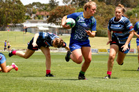 NZ Wasps v Illawarra Sports High